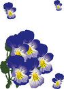 Free Illustration With Blue Violets Stock Photography - 15736402