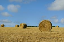 Free Straw Bales On The Field Royalty Free Stock Photo - 15730915