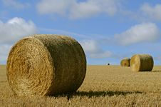 Free Straw Bales On The Field Stock Photo - 15730940