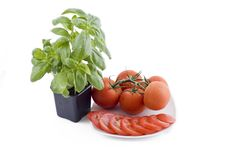 Fresh Basil And Plate Of Tomatos Stock Photo