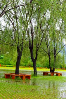Free Park In The Rain Royalty Free Stock Image - 15732556