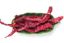 Dried Chili Stock Photography