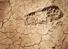 Free Imprint Of The Shoe On The Dried And Cracked Mud. Stock Image - 15733151