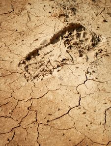 Imprint Of The Shoe On The Mud. Stock Photography