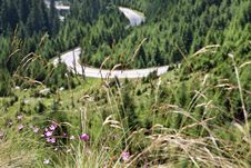 Free High Mountain Road Royalty Free Stock Photography - 15734907