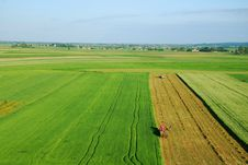 Free Aerial View Of Green Meadow Royalty Free Stock Photography - 15736127