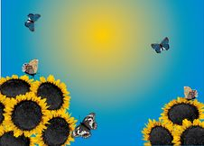 Free Yellow Sunflowers And Butterflies Illustration Royalty Free Stock Images - 15736399
