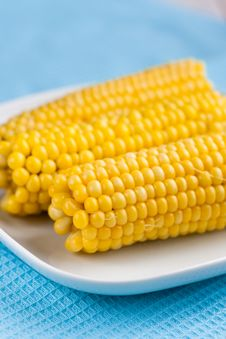 Free Cooked Corn Cobs Stock Photos - 15737043