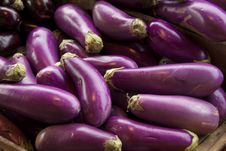 Free Eggplants In Farmer S Market Stock Images - 15739194