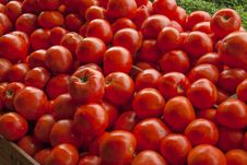 Tomatoes On Vegetable Stand Royalty Free Stock Images