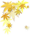 Free Autumn Leaves Royalty Free Stock Image - 15740496