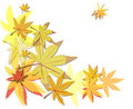 Free Autumn Leaves Stock Photography - 15740512