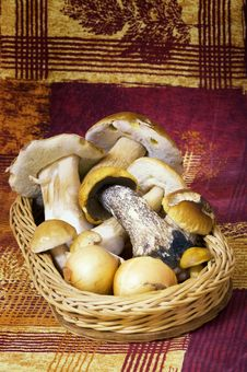 Free Basket With Mushrooms And Onions Stock Photos - 15741153