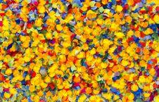 Free Confetti Stock Photo - 15742790