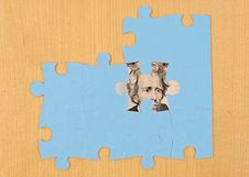 Free The Prize Beneath The Puzzle Stock Photography - 15745682
