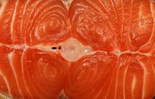 Free Salmon Fillets Royalty Free Stock Photography - 15746467