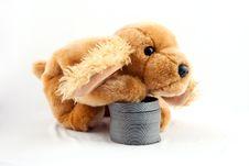 Free Slinky Dog Royalty Free Stock Images - 15747999