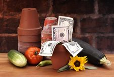 Free Pots With Growing Money Royalty Free Stock Photography - 15749437
