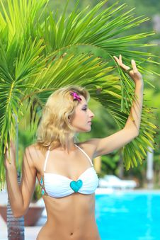 Free Woman Near Palm Royalty Free Stock Image - 15749446