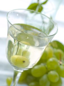 Free Wine Stock Images - 15751594