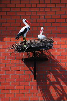 Free Family Of Storks Royalty Free Stock Image - 15751686