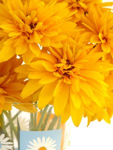 Bouquet Of Beautiful Yellow Flowers Royalty Free Stock Photos