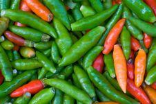 Free Chilli Royalty Free Stock Photos - 15752428
