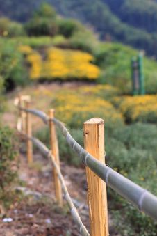 Free Fence Stock Photography - 15753882