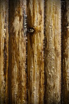 Texture Of Wood Stock Image