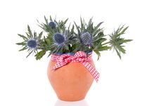 A Bouquet Of Blue Thistles Stock Photo