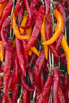 Free Pepper Royalty Free Stock Image - 15758496