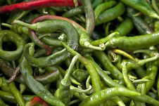 Free Hot Peppers Royalty Free Stock Photos - 15760808