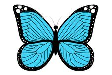 Free Blue Butterfly Royalty Free Stock Photography - 15762657