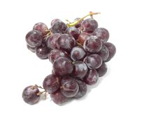 Free Grapes Stock Images - 15763394