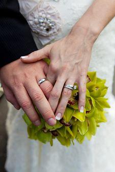 Free Rings Royalty Free Stock Image - 15765156