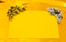 Free Yellow Greeting Card Stock Images - 15766314