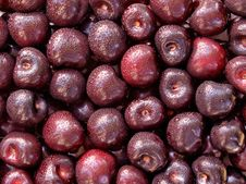 Free Cherry. Royalty Free Stock Photography - 15766567