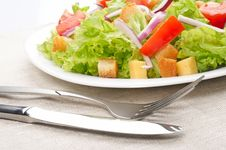 Free Salad On White Plate Royalty Free Stock Image - 15769906