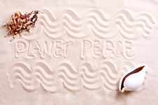 Seashells In Sand With Text Stock Photo