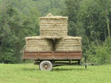 Free Old Wagon With Hay On Prairie Stock Image - 15770431
