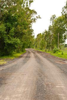 Free Rural Road Royalty Free Stock Photo - 15771115