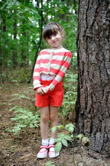 Free Nice Toddler Girl In Cute Shorts And Stripe Sweate Royalty Free Stock Photo - 15775525