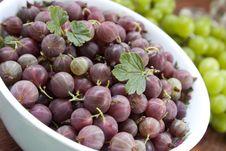 Free Red Gooseberries Stock Photo - 15778950