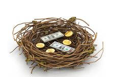 Free Dollar And  Coin In Nest Royalty Free Stock Photography - 15779437