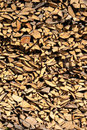 Free Firewood Royalty Free Stock Photography - 15781437