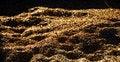 Free Wheat Background Stock Image - 15784681