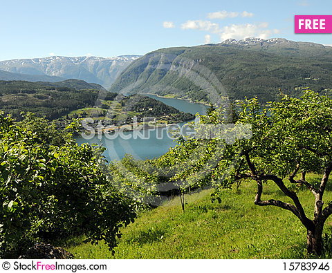 View over Hardangerfjord, Norway Stock Photo