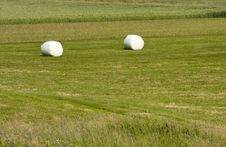 Free Hay Bales Stock Photo - 15780310