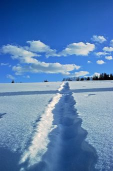 Tracks On The Snow Royalty Free Stock Photos