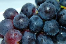 Free Clammy Grapes Stock Photos - 15783383